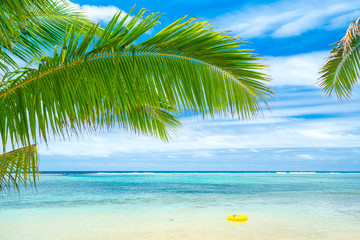 Photo sur Plexiglas Plage An idyllic beach with palm trees in Rarotonga in the Cook Islands