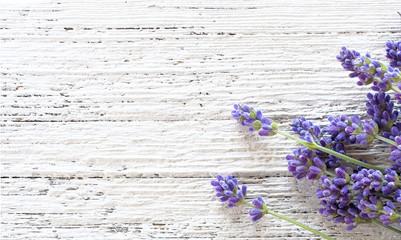Lavender on white wooden background