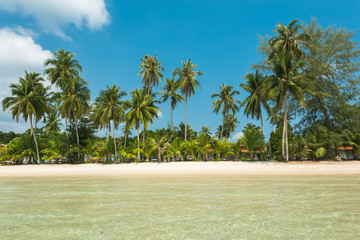 Wall Mural - Scenery beach with gentle wave at Koh Kood Island in summer, Clean and bright tropical sea and beach with coconut tree palm