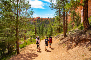 Hiking trip in Bryce Canyon National Park, Utah, USA