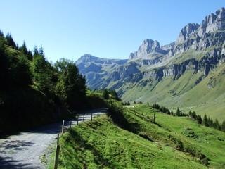 Autumn grasslands on the Alpine peaks Fisetengrat and Chamerstock - Cantons of Uri and Glarus, Switzerland
