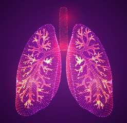 vector lungs and bronchi. vector design. point and dot style