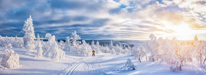 Stores à enrouleur Glisse hiver Cross-country skiing in winter wonderland in Scandinavia at sunset