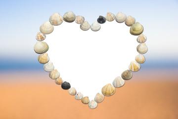 frame for photography of seashells