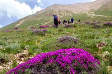 Urlaub in Iran