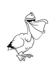 Pelikan witzig vogel seevogel fliegen Meer cartoon natur Wasser Tier sonnenbrille einfarbig