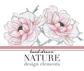 Vector typography slogan with peony flower illustration. Hand drawn botanical sketch. Romantic drawing wedding design.