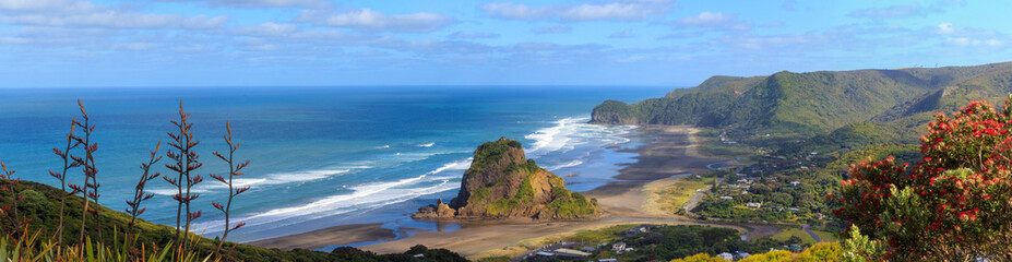 Piha Beach and Lion Rock aerial panorama Wall mural