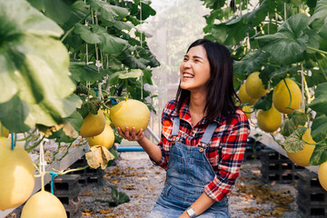 One young beautiful Asian female farmer having happy smile and wearing red checkered shirt while working inside farm agriculture garden.