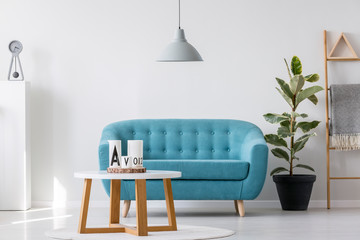 White wooden coffee table next to blue elegant couch in bright living room interior with plant in black pot and scandinavian ladder