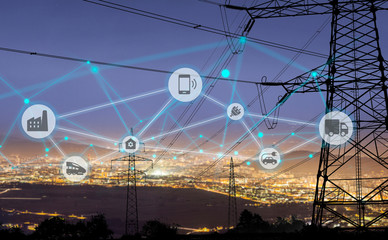 Smart Electricity Grids