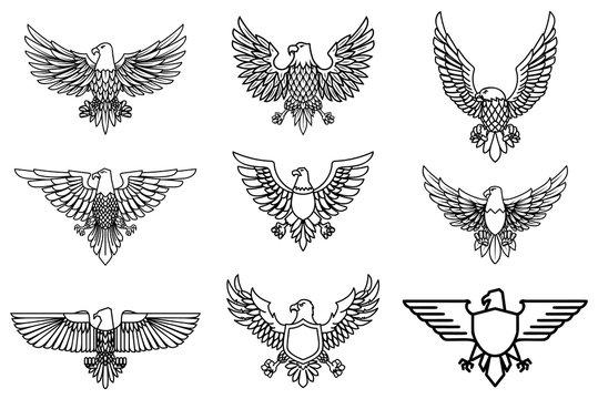 Set of eagle icons isolated on white. Design element for logo, label, emblem, sign.