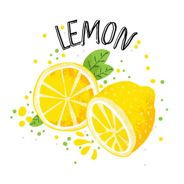 Vector hand draw lemon illustration. Half and slice of lemons with juice splashes isolated on white background. Textured yellow citrus sketch, juice citrus fruit with word Lemon on top. Fresh ripe