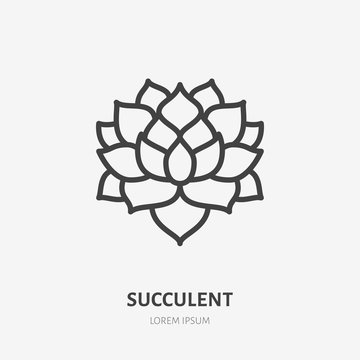 Succulent flat line icon. Vector thin sign of house plant, botanical logo. Nature illustration, home garden shop symbol