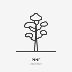 Pine tree flat line icon. Vector thin sign of evergreen plant, ecology logo. Nature illustration, forest symbol