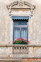 weathered but beautiful house window with geranium flowers
