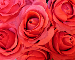 red fake roses closeup, colorful background