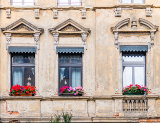 weathered but beautiful house windows with geranium flowers