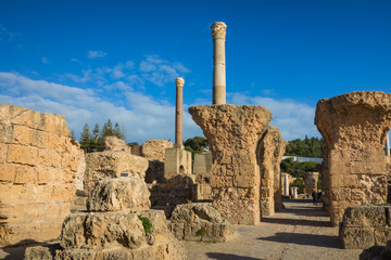 Ruins of the ancient Carthage city, Tunis, Tunisia, North Africa.