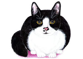 Black and white cat. Watercolor illustration. The cat is hiding and preparing to attack. Illustration for design, decor.