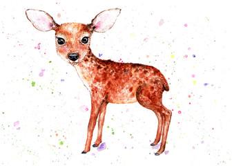 Fawn. Watercolor illustration. A delicate little fawn. Beautiful, children's illustration. Illustration for design, decor.