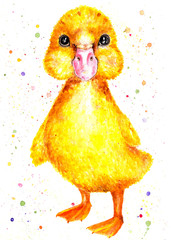 Duckling. Watercolor illustration. Little yellow duckling. Children's illustration. Illustration for design, decor.
