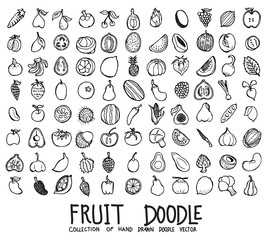 Set of Fruit icons Drawing illustration Hand drawn doodle Sketch line vector eps10