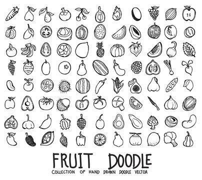 Set of Fruit icons Drawing illustration Hand drawn doodle Sketch line vector eps10