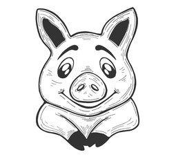 Pig on a white background. Sketch. Vector. Piglet. Hand drawing. Circuit. Line