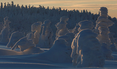 Trees covered with snow are seen during sunset at the mountain resort in Szczyrk