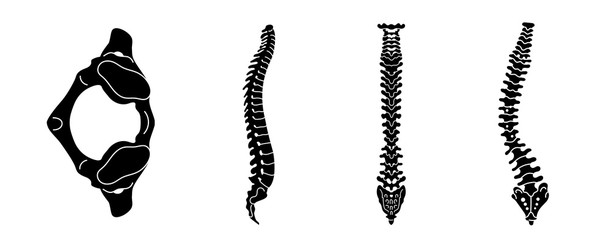 Spine icon set. Simple set of spine vector icons for web design on white background