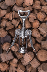 corkscrew and bottle wine corks collection