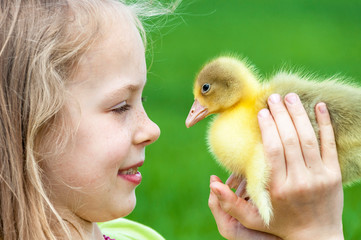Little girl with spring duckling