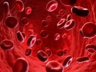 Illustration of human blood stream