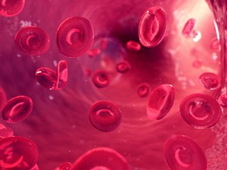 Illustration of human blood cells