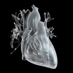 Illustration of glass heart