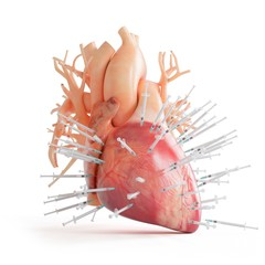 Illustration of a heart spiked with syringes