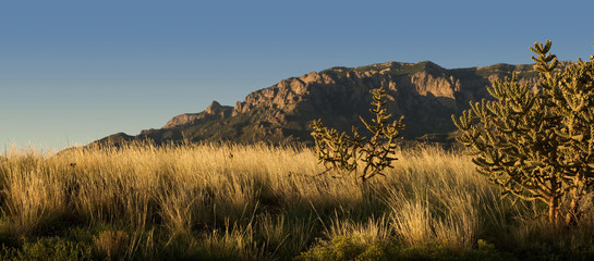 Sunset over New Mexico desert and the Sandia Mountains, outside of Albuquerque