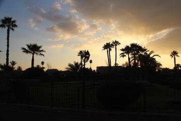 Trip to Morocco Africa. Marrakesh, Atlas Mountains