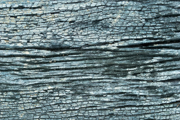 Old wood texture with natural