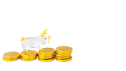 Glass pig model and stacks of gold coins