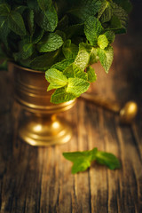Fresh mint leafs in vintage mortar and pestle on wooden table