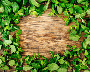Fresh mint leafs on wooden background