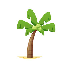 Coconut palm tree vector isolated
