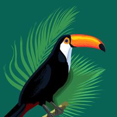 toucan pattern vector illustration