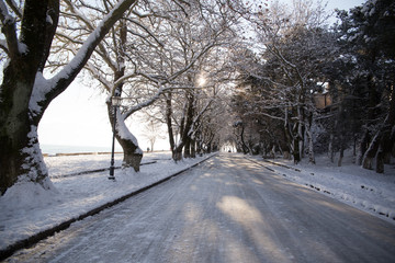 snow ice winter season trees road in Ioannina city Greece