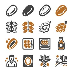 date palm icon set,vector and illustration