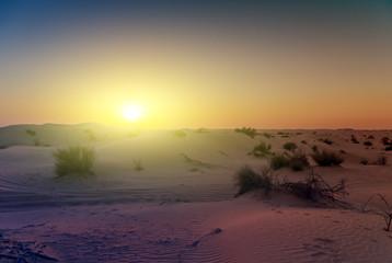Spring sunset desert sand Dunes background.
