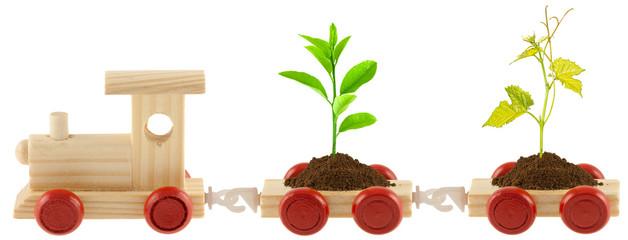 plantes sur wagon de petit train, fond blanc