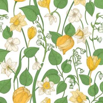 Floral seamless pattern with blooming spring flowers and leaves on white background